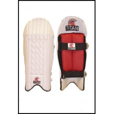 Wicket-keeping Leg Guards
